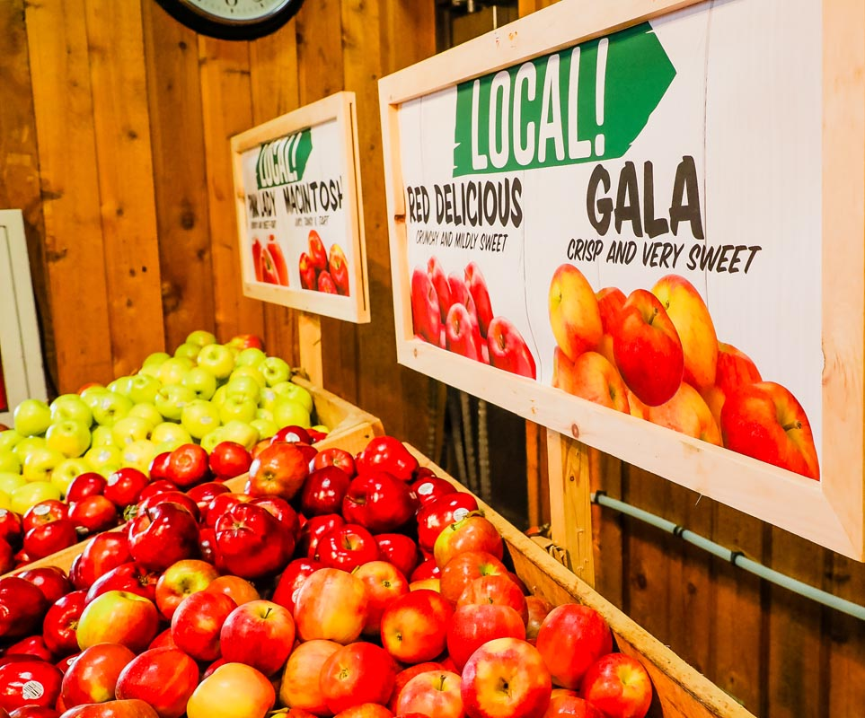 Local Gala Apples