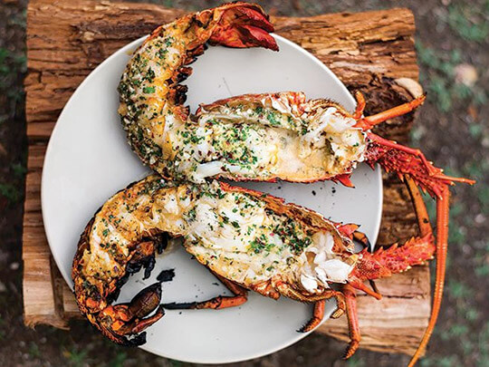 Grilled Lobster